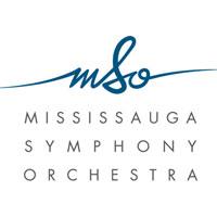 144899756-MSO-Logo